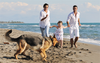 family running on beach with dog