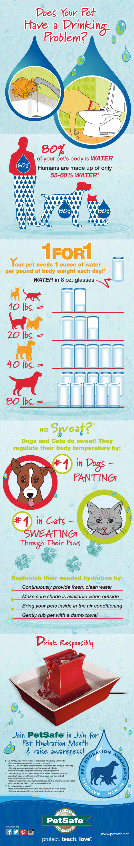 Avoid dog dehydration with these tips - infographic.