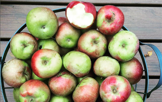 apples in basket are a quick healthy after school snack to make